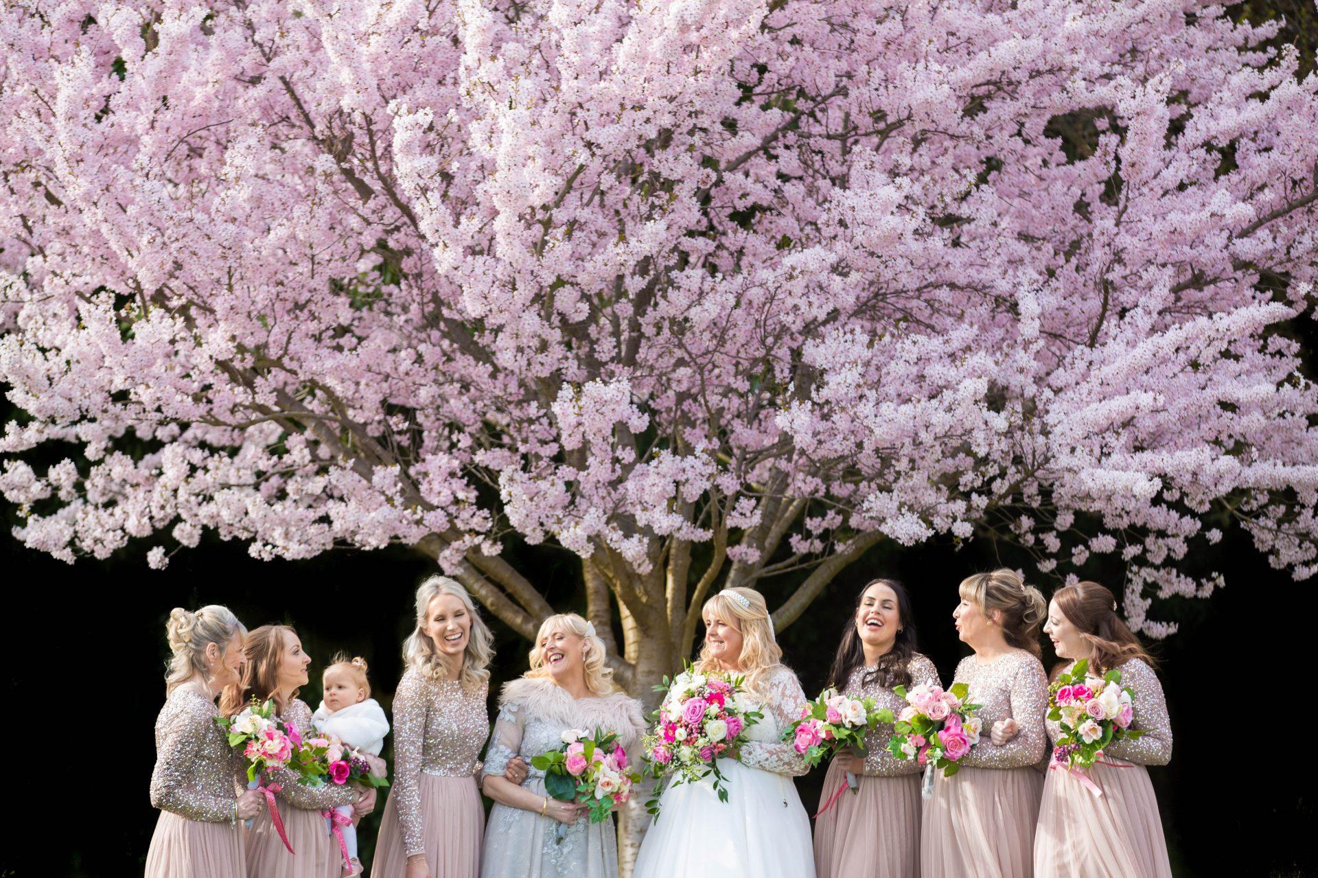 Professional Wedding Photographer.